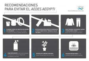 infografía_aedesegypti