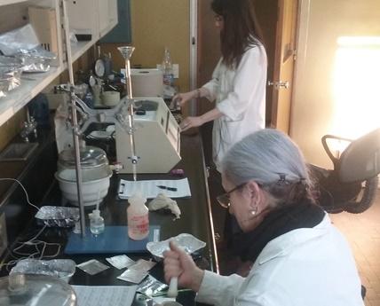 Mujeres en la ciencia_2017
